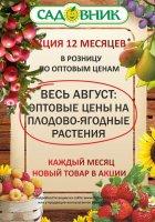 """Акция """" 12 месяцев в Садовнике""""- Август"""