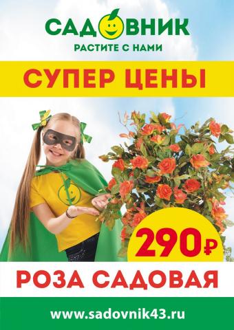 """Акция """"Товар месяца в Садовнике"""" - Июль"""