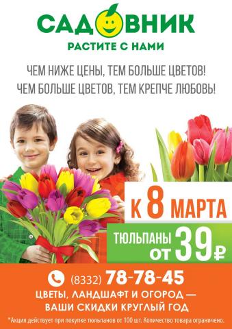 Акция «Тюльпан к 8 марта по 39 рублей!»